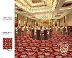 酒店vwin德赢ac米兰合作伙伴D-09